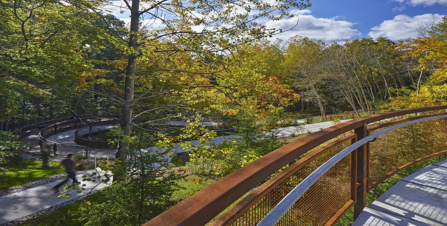 University of Toronto - Scarborough - University of Toronto Scarborough Valley Land Trail