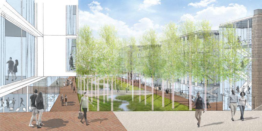 University of Virginia - UVA Ivy Corridor Landscape Framework