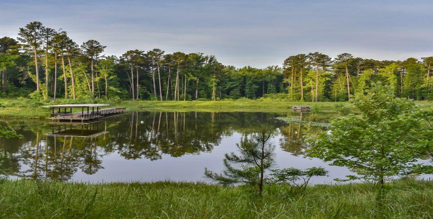 Duke University - Duke University Water Reclamation Pond