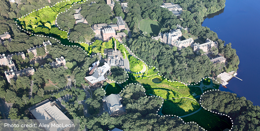 Wellesley College - 1998 Wellesley College Master Plan and Implemented Projects